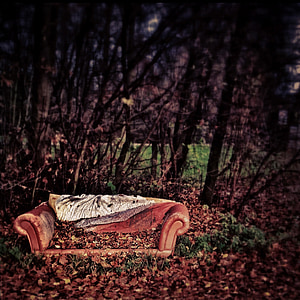 brown leather sofa surrounded by trees with withered leaves