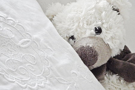 white and brown teddy bear laying on white pillow