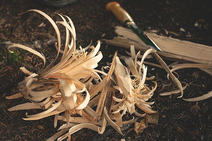 chisel beside scraped woods