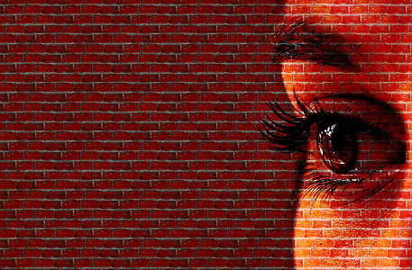 human eye brick painting